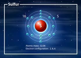 Diagramme atome chimiste du cobalt vecteur