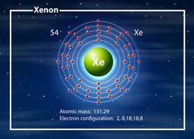 Diagramme atome de chimiste du xénon vecteur