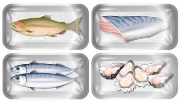 Ensemble de fruits de mer dans l'emballage vecteur