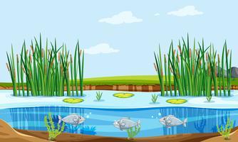 Étang à poissons nature scène vecteur