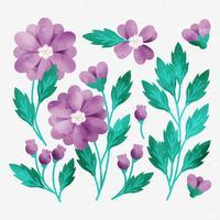 Fleurs dessinées à la main de vecteur