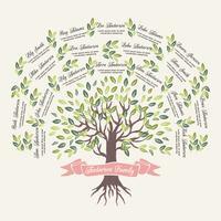 Modèle d'arbre généalogique de vecteur