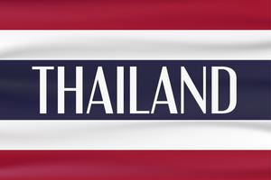 Nouveau drapeau de type du pays de la Thaïlande avec la couleur rouge, bleue et blanche. vecteur