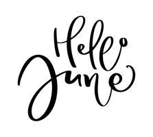 Texte de lettrage de typographie dessiné à la main Bonjour juin. Isolé sur le fond blanc. Calligraphie amusante pour les cartes de vœux et les invitations ou le calendrier de conception d'impression de t-shirt