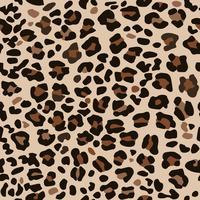 Imprimé léopard marron. vecteur