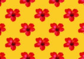 Illustration vectorielle de fleur d'hibiscus fond tropical. vecteur