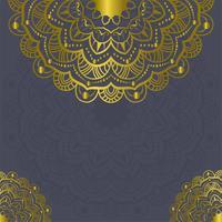 Éléments de décorations vintage Mandala et images vectorielles [Converted]