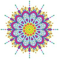 Éléments de décorations vintage mandala coloré vector illustration