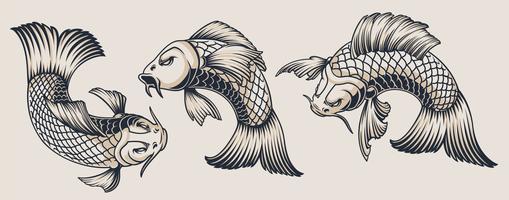 Ensemble d'illustrations de carpes koi vecteur