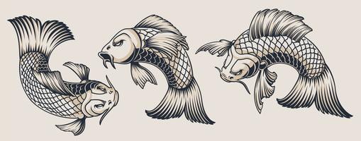 Ensemble d'illustrations de carpes koi