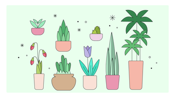 Vecteur de plantes décoratives