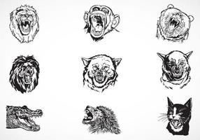Pack de vecteur Fierce Animals