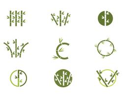 Icône de vecteur de bambou Logo Template