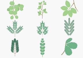 Pack de vecteur de branches de feuilles vertes