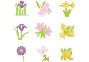 Pack vecteur de fleurs colorées