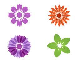 Fleur de jasmin icône vector illustration design logo modèle