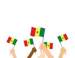 Illustration vectorielle des mains tenant des drapeaux du Sénégal isolés sur fond blanc