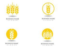 blé Logo et symboles Template vector icon design