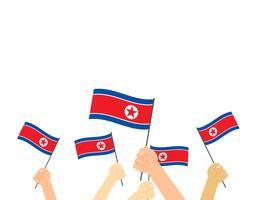 Main tenant des drapeaux nord-coréens isolés sur fond blanc vecteur