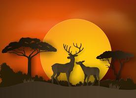 cerf en forêt avec coucher de soleil