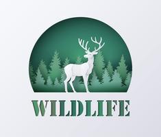 Journée mondiale de la vie sauvage avec le cerf en forêt vecteur