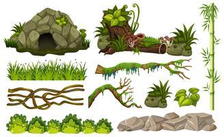 Ensemble d'objets de la jungle vecteur