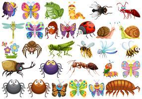 Ensemble de personnage d'insecte vecteur