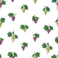 Modèle sans couture de branche de raisin. Ornement de fruits naturels vin yard. Fond de nourriture. vecteur