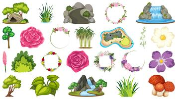 Ensemble de plantes ornementales