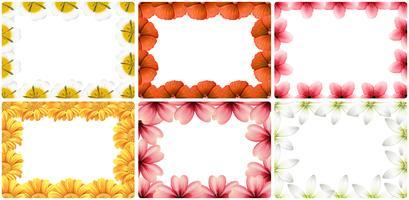 Ensemble de bordure de fleur vecteur