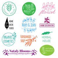 Logo botanique dessiné à la main vecteur