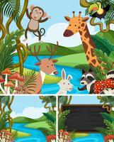 Modèle de fond avec des animaux en montagne vecteur