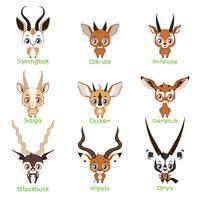 Ensemble d'espèces d'antilopes