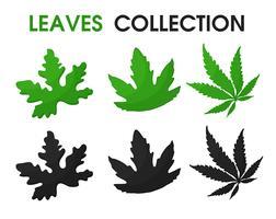 Belles formes de feuilles et d'ombres vecteur