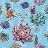 Modèle sans couture avec des plantes succulentes sur fond bleu. Graphique. Aquarelle