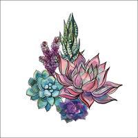 Bouquet de plantes succulentes. Arrangement de fleurs pour la conception. Aquarelle. Graphique. Vecteur.