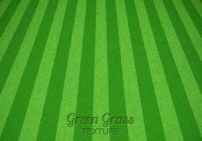 Texture de vecteur herbe verte fauchée