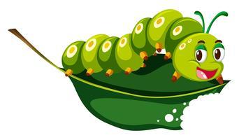 Chenille mignonne mâchant une feuille verte