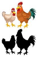 Caractère coq poulet poule vecteur