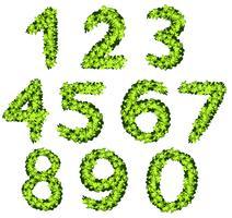 Conception de police pour les nombres avec texture d'herbe vecteur