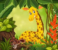 Girafe sur le cadre nature vecteur