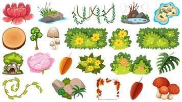 Ensemble de plantes ornementales vecteur