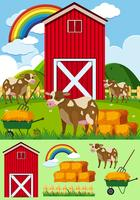 Vaches et grange rouge dans la cour de ferme