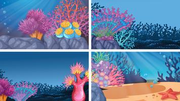 Ensemble de différentes scènes sous-marines colorées