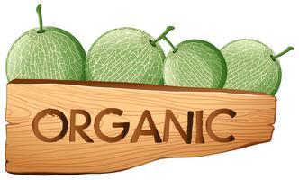 Fruits cantaloups et enseigne bio vecteur