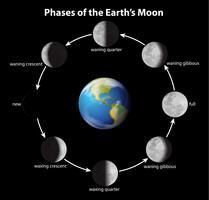 Les phases de la lune vecteur