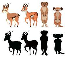 Ensemble de personnage animal exotique vecteur