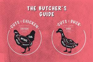 Le guide du boucher, coupe de poulet et de canard vecteur