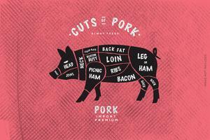 Le guide du boucher, coupe de porc vecteur
