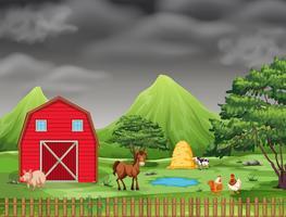Beaucoup d'animaux sur les terres agricoles